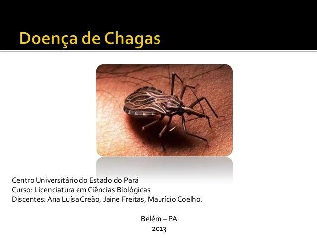 Centro Universitário do Estado do ParáCurso: Licenciatura em Ciências BiológicasDiscentes:Ana Luísa Creão, Jaine Freitas, ...
