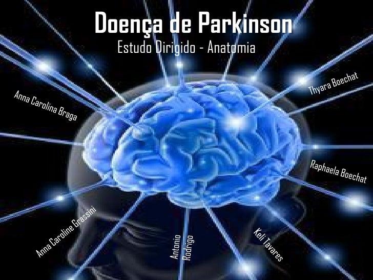Doença de Parkinson   Estudo Dirigido - Anatomia