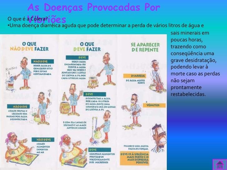 As Doenças Provocadas Por        VibriõesO que é a Cólera?•Uma doença diarréica aguda que pode determinar a perda de vário...