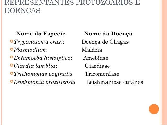 Doenças causadas por protozoários e vermes Slide 3