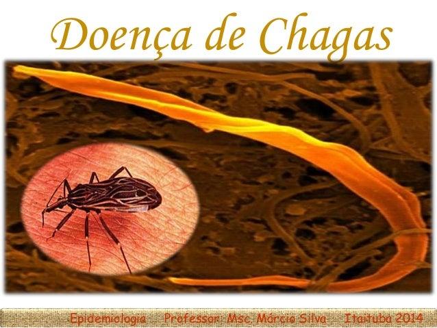 Doença de Chagas Epidemiologia Professor: Msc. Márcio Silva Itaituba 2014