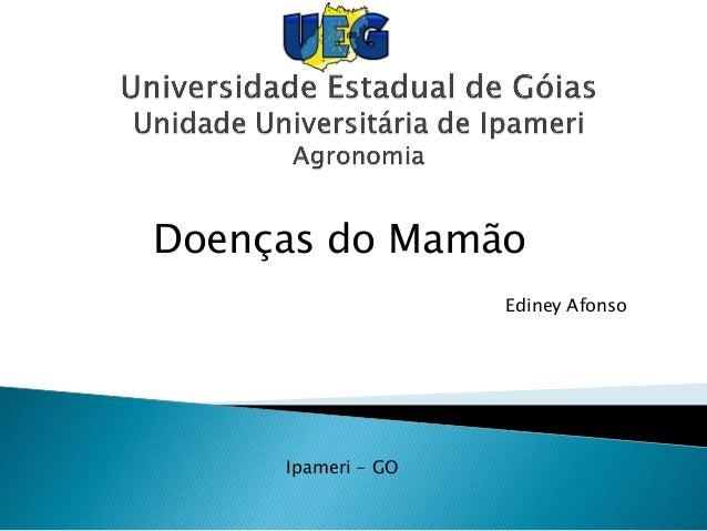 Doenças do Mamão Ediney Afonso Ipameri - GO