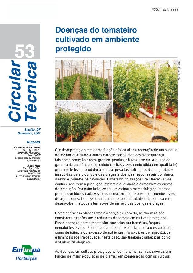 ISSN 1415-3033 53 Doenças do tomateiro cultivado em ambiente protegido Circular Técnica Brasília, DF Novembro, 2007 Autore...
