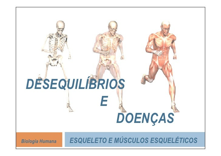 DESEQUILÍBRIOS            E               DOENÇAS Biologia Humana   ESQUELETO E MÚSCULOS ESQUELÉTICOS