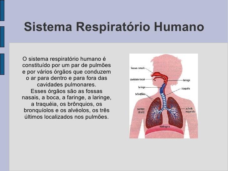 Sistema Respiratório Humano  O sistema respiratório humano é constituído por um par de pulmões e por vários órgãos que con...