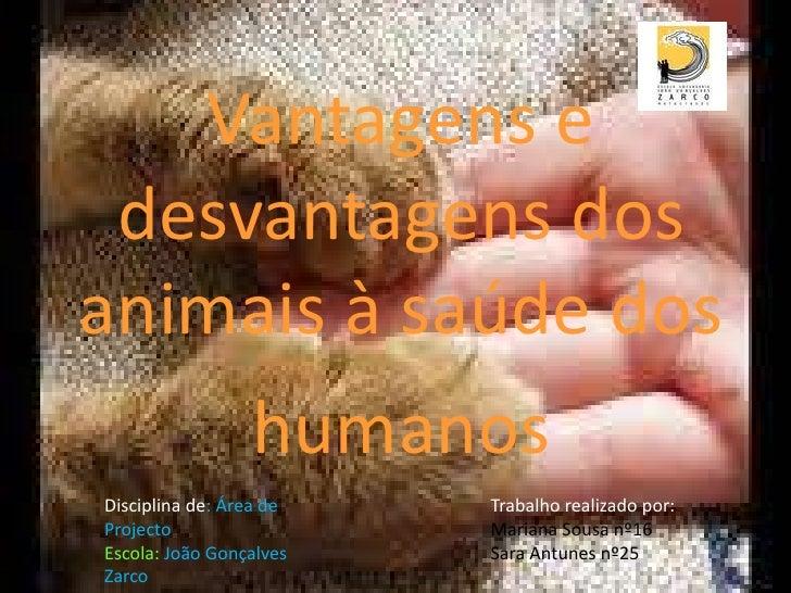 Vantagens e desvantagens dos animais à saúde dos humanos<br />Trabalho realizado por: <br />Mariana Sousa nº16<br />Sara A...