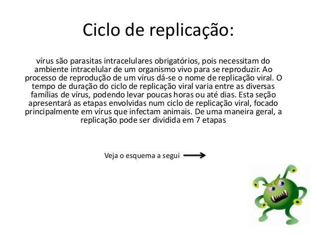 Ciclo de replicação: vírus são parasitas intracelulares obrigatórios, pois necessitam do ambiente intracelular de um organ...