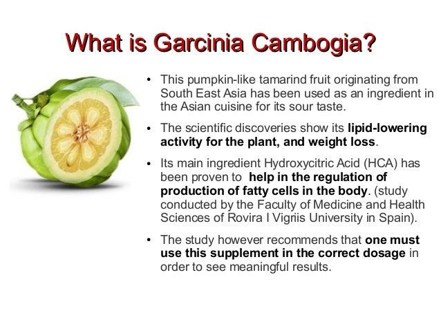 garcinia cambogia buy the fruit