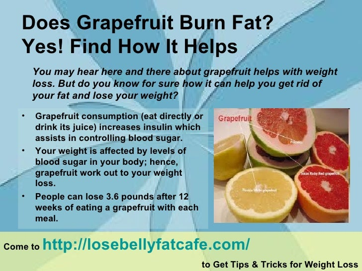 Does grapefruit burn fat - Yes! Find how it helps