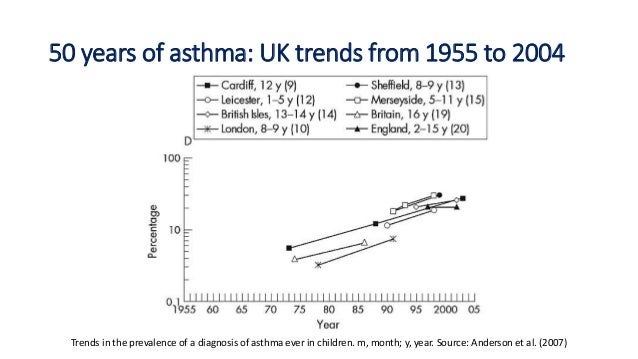 Does Traffic Pollution Cause Asthma Essay