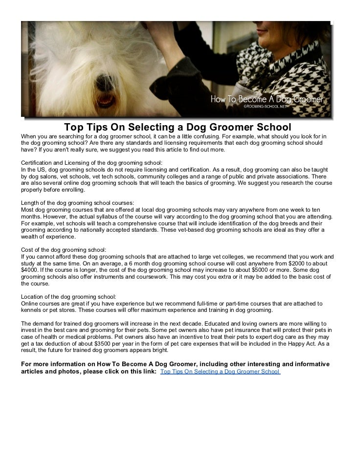 Top Tips On Selecting A Dog Groomer School