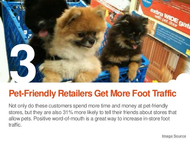 7 Ways Pets Can Increase In-Store Traffic