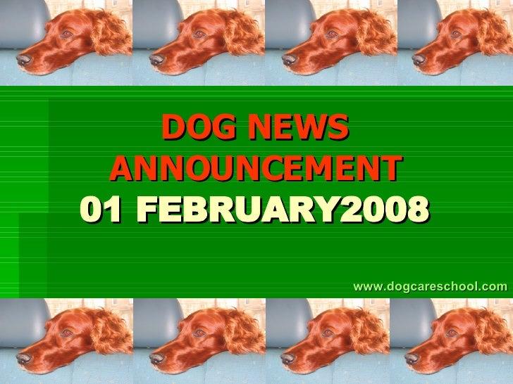 DOG NEWS ANNOUNCEMENT 01 FEBRUARY2008 www.dogcareschool.com