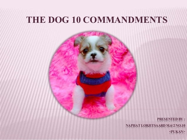 PRESENTEDBY : NAPHATLORJITSAARDM.6/2 NO.10 <PUKAN> THE DOG 10 COMMANDMENTS