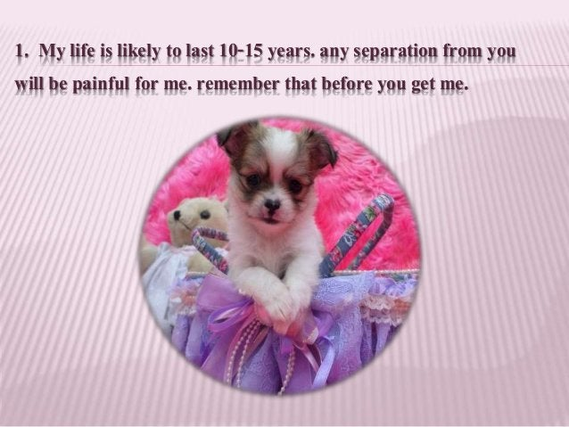 1. My life is likely to last 10-15 years. any separation from you will be painful for me. remember that before you get me.