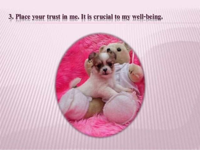 3. Place your trust in me. It is crucial to my well-being.