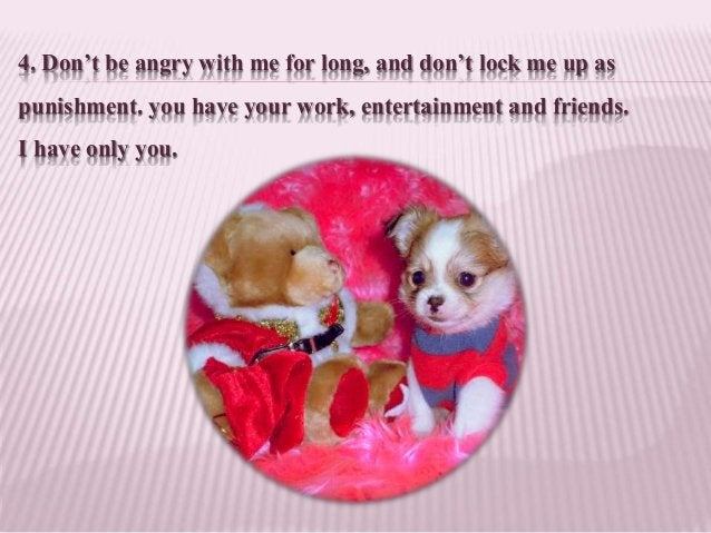 4. Don't be angry with me for long, and don't lock me up as punishment. you have your work, entertainment and friends. I h...