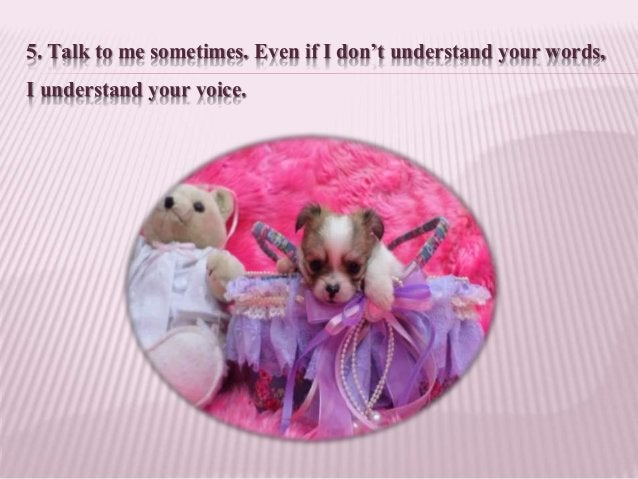 5. Talk to me sometimes. Even if I don't understand your words, I understand your voice.