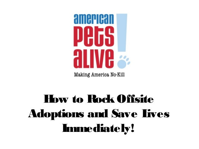 How to Rock Offsite Adoptions and Save Lives Immediately!