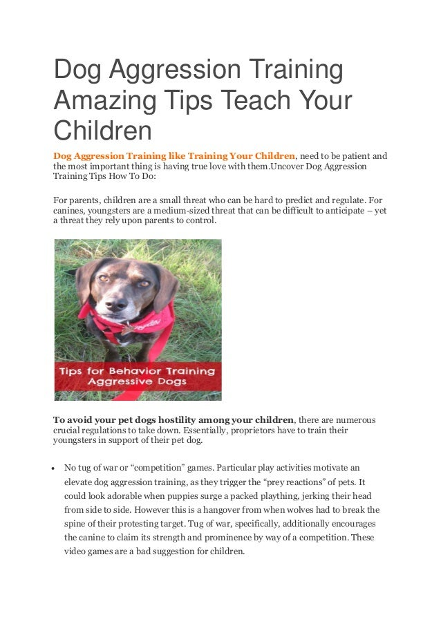 Dog Aggression Training Amazing Tips Teach Your Children Dog Aggression Training like Training Your Children, need to be p...