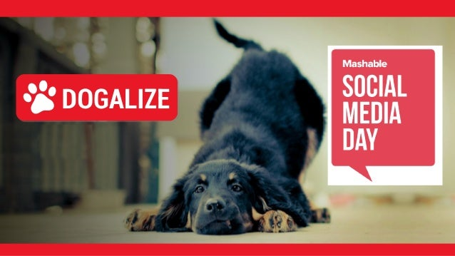Il Capo Branco di Dogalize Mashable Social Media Day Milano SARA COLNAGO Un GROSSO Bau da…