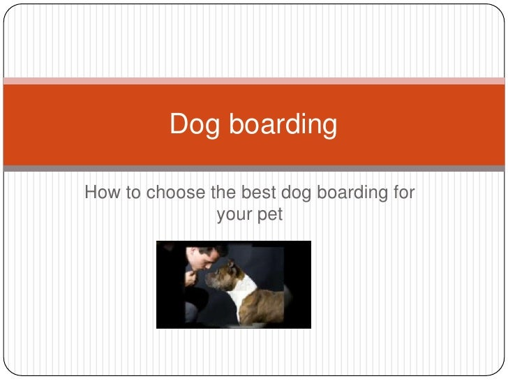 How to choose the best dog boarding for your pet<br />Dog boarding <br />