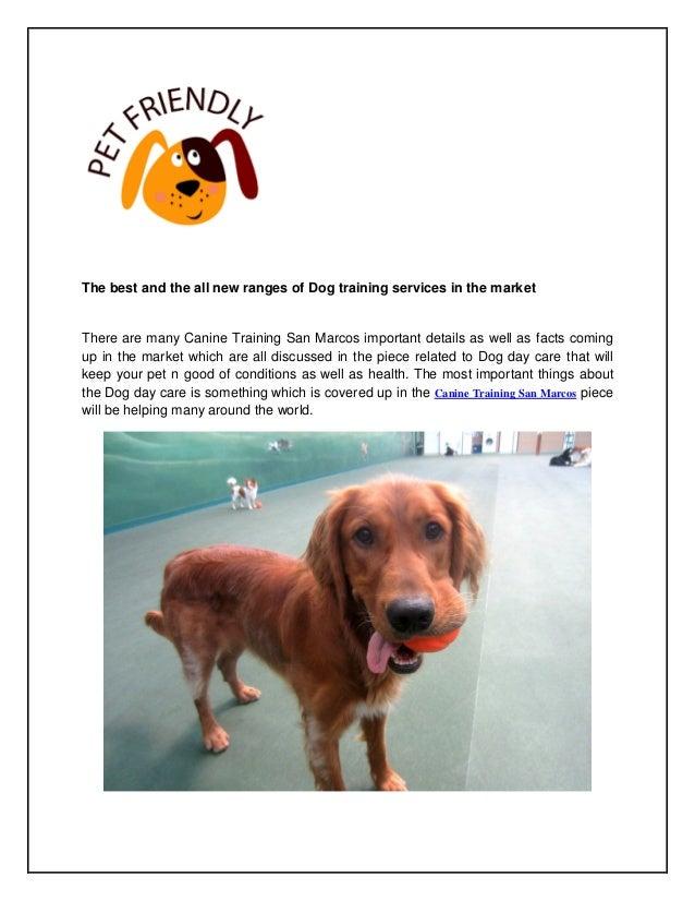 dog boarding encinitas