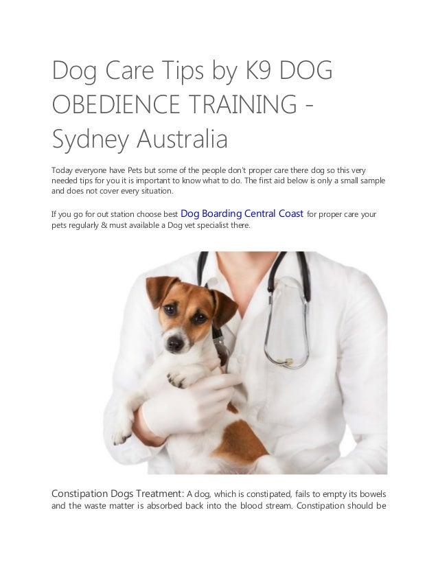 Best Dog Boarding In Sydney
