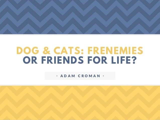 DOG & CATS: FRENEMIES OR FRIENDS FOR LIFE? ᐧ A D A M C R O M A N ᐧ