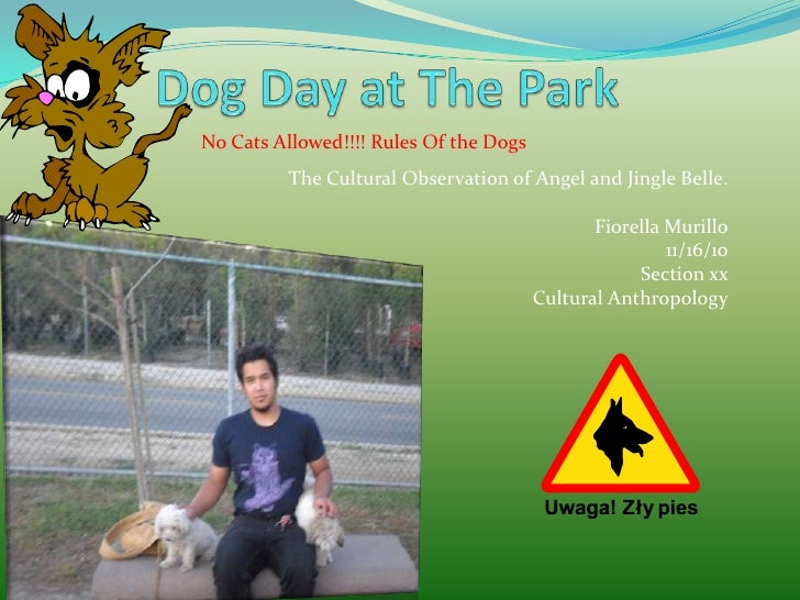 Dog Day at The Park <br />No Cats Allowed!!!! Rules Of the Dogs<br />The Cultural Observation of Angel and Jingle Belle. <...