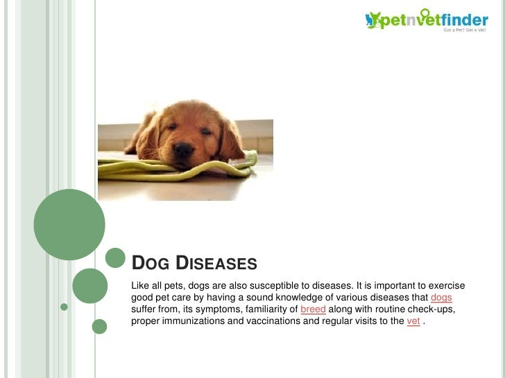 Dog Diseases<br />Like all pets, dogs are also susceptible to diseases. It is important to exercise good pet care by havin...