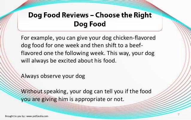 Should You Change Dog Food Flavors