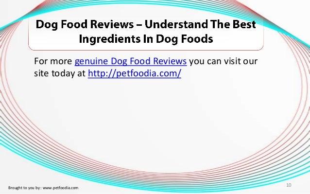 Is Buying Dog Food Online Safe