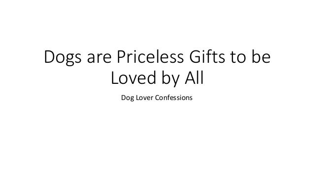 Dogs are Priceless Gifts to be Loved by All Dog Lover Confessions