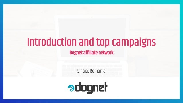 Introduction and top campaigns Dognet affiliate network Sinaia, Romania