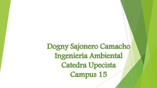 Dogny Sajonero Camacho  Ingeniería Ambiental  Catedra Upecista  Campus 15