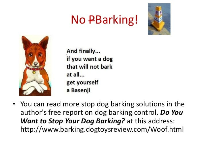14. No PBarking!u2022 You Can Read More Stop Dog Barking ...