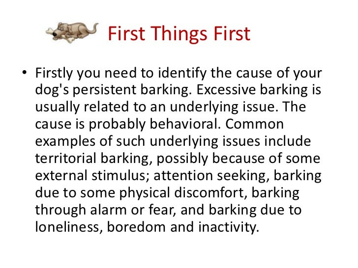 3 - Best Way To Stop A Dog From Barking