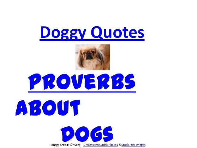 Doggy Quotes ProverbsAbout   Dogs  Image Credit: © Werg | Dreamstime Stock Photos & Stock Free Images