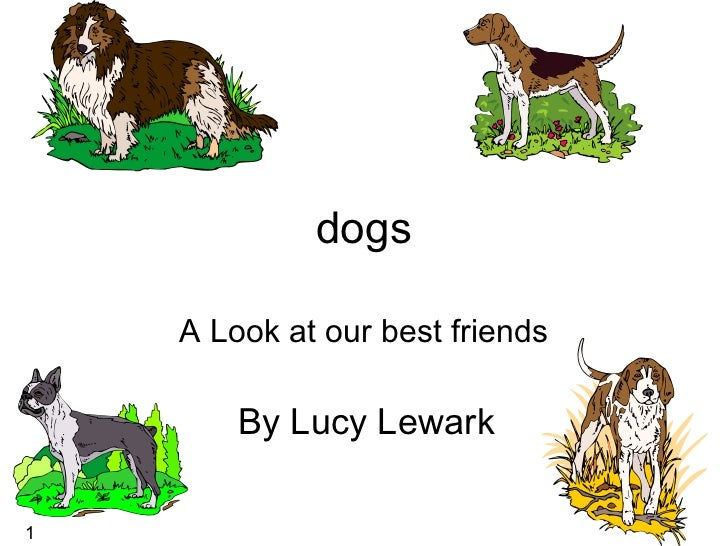 dogs A Look at our best friends By Lucy Lewark  1