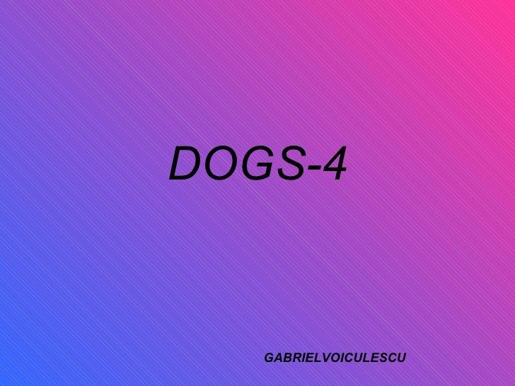 DOGS-4 GABRIELVOICULESCU