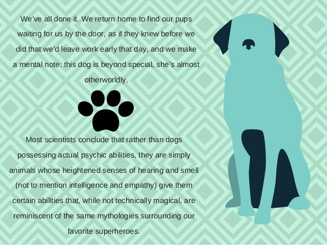 Dogs and their Sixth Sense  Slide 2