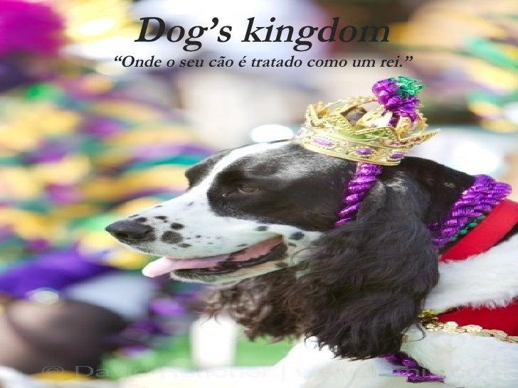 """Dog's kingdom """"Onde o seu cão é tratado como um rei."""""""