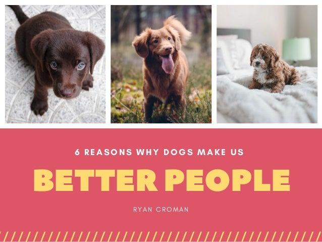 BETTERPEOPLE 6 REASONS WHY DOGS MAKE US R Y A N C R O M A N