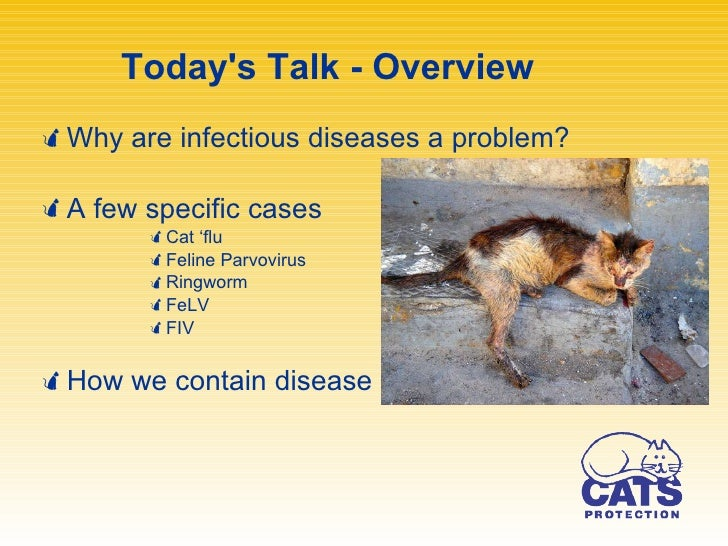 infectious disease control Nchhstp maximizes public health and safety nationally and internationally  through the elimination, prevention, and control of disease,.
