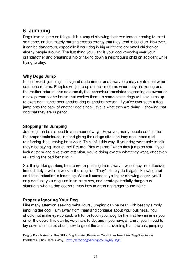 Free Dog training ebook- 10 common dog obedience problems ...