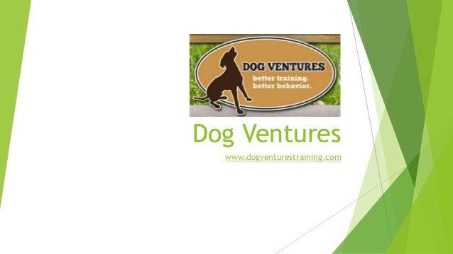Dog Ventures www.dogventurestraining.com