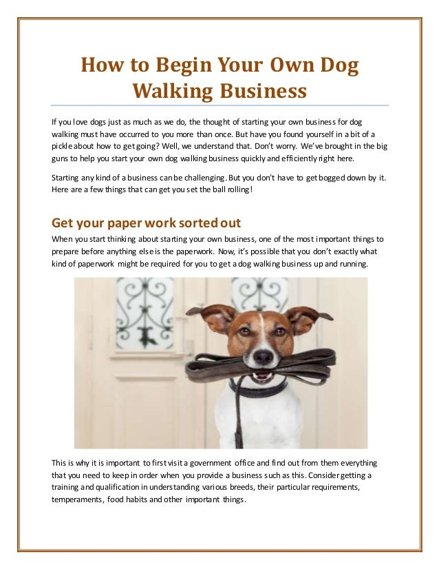 How to Begin Your Own Dog Walking Business If you love dogs just as much as we do, the thought of starting your own busine...