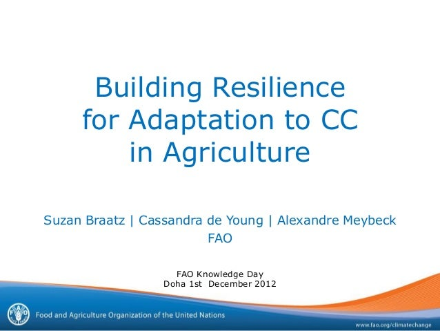 Building Resilience     for Adaptation to CC         in AgricultureSuzan Braatz | Cassandra de Young | Alexandre Meybeck  ...