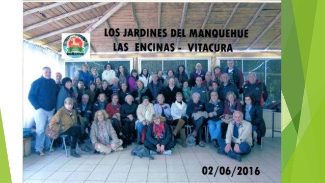 PASEO A DOÑIHUE 2 DE JUNIO 2016 Balneario BAMBI – Doñihue sexta región
